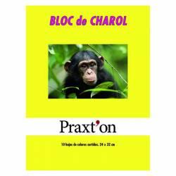 BLOC CHAROL PRAXTON 10H P/25U