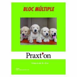 BLOC MANUALIDADES PRAXTON MULTIPLE P/10U