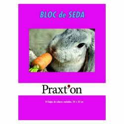 BLOC PAPEL SEDA PRAXTON 10H P/25U