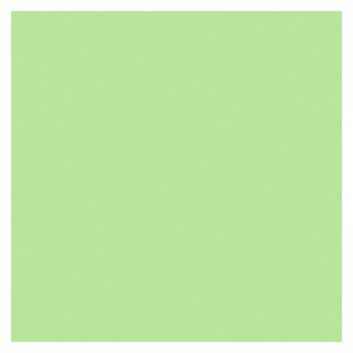 CARTULINA PRAXTON 50X65 25H VERDE GREEN